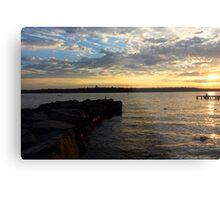 Lake Washington Metal Print