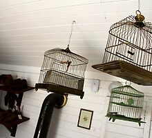 Vintage Bird Cages by Camilla