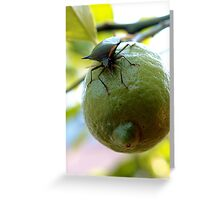 lemon invasion Greeting Card