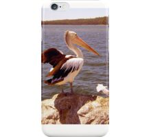 Pelican and Seagull  iPhone Case/Skin