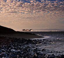 Shipwreck Beach by Alex Preiss