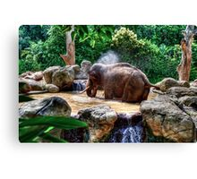 Jumbo Shower Canvas Print