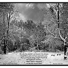 Winter's Wasteland - By MoGeoPhoto and Ange Chan by MoGeoPhoto