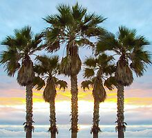 Palms to Heaven  by Jarrod Valliere