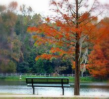 Autumn bench and lake by talprofit