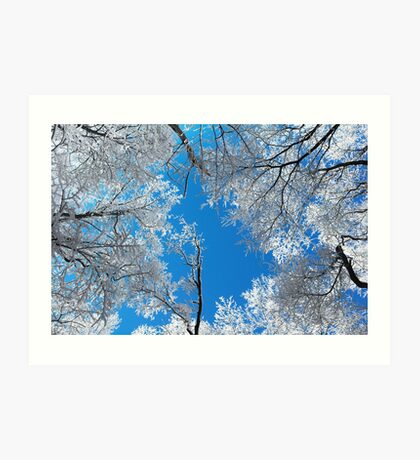 Snowy Winter Scene Art Print