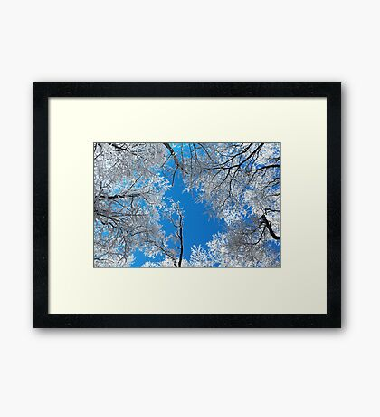 Snowy Winter Scene Framed Print