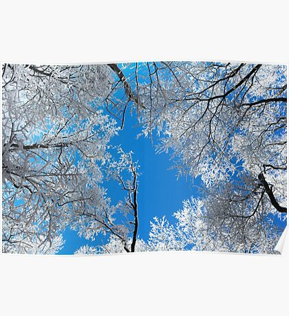 Snowy Winter Scene Poster