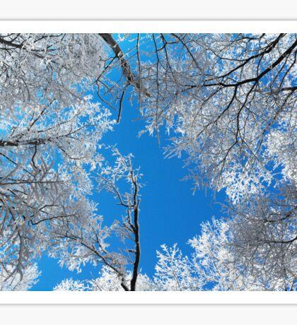 Snowy Winter Scene Sticker