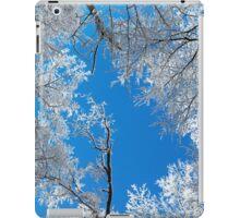 Snowy Winter Scene iPad Case/Skin