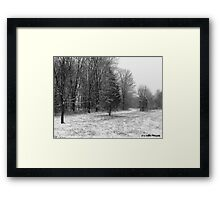 Winter Meadow Framed Print