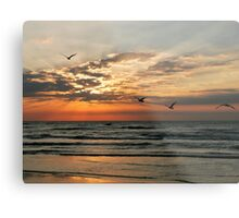 Morning Sun Rays Metal Print