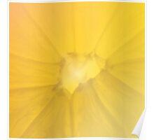 Lemon Section Poster