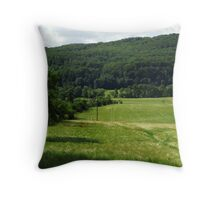 Wheat field in spring Throw Pillow