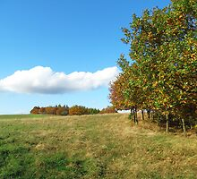 Autumn meadow with clouds by Brevis