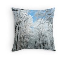 Snowy Winter Road Scene Throw Pillow