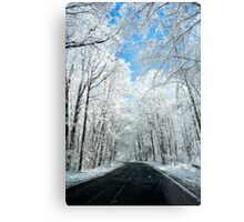Snowy Winter Road Scene Metal Print