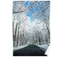Snowy Winter Road Scene Poster