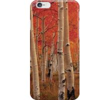 Autumn Leaves in the Fall iPhone Case/Skin