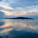 Floating Island, Isola Polvese, Lago Trasimeno, Umbria, Italy by Andrew Jones