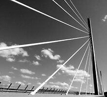 Millau Bridge South France 1 by Franglais