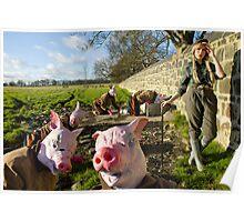 Piggy Herder Poster