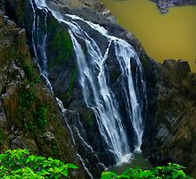 Waterfall in Kuranda, Barron National Park by Angelika  Vogel