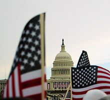 Capitol and Flags by anniemgo