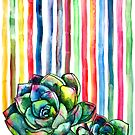 Rainbow Succulents by micklyn