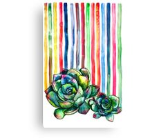Rainbow Succulents Canvas Print