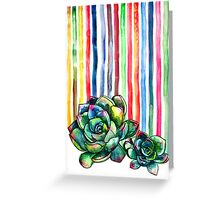 Rainbow Succulents Greeting Card