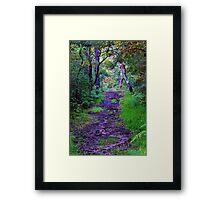 Trails. Framed Print