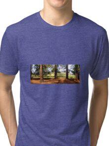 Redwoods and vineyards Tri-blend T-Shirt