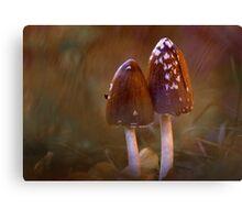 Inkcap mushrooms Canvas Print