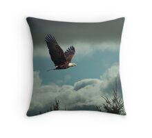 Scenic Flight Throw Pillow