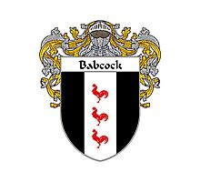 Babcock Coat of Arms/Family Crest Photographic Print