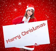 Santa Claus Woman With Sale Billboard by savage1
