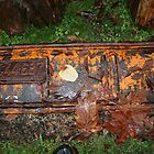 vintage rusty licence plate by LauraBalducci