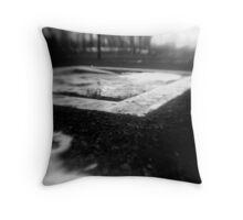 1955 Throw Pillow