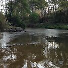 Yarra near Warrandyte Bridge #4 by Tatterhood