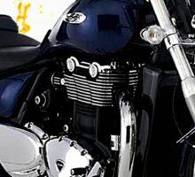 Triumph Thunderbird Road Warrior Sticker