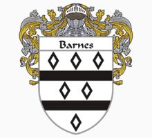 Barnes Coat of Arms/Family Crest by William Martin