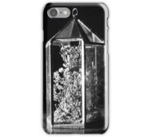 A Hint of Nature iPhone Case/Skin