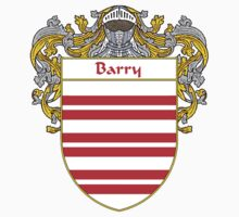 Barry Coat of Arms/Family Crest by William Martin