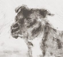 Pitbull Dog Illustration by Galen Valle