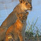 A coy mother and child! by jozi1