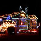 Christmas Lights by Sharon Brown