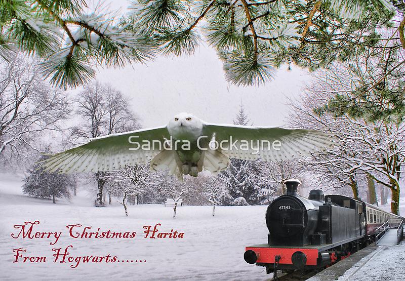 Happy Christmas Harita from Hogwarts Greetings Card by Sandra Cockayne