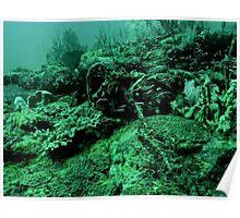CONVICT REEF Poster