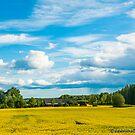 Rural Swedish Landscape by Michael Brewer